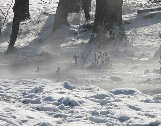 冬天雪地摄影图片